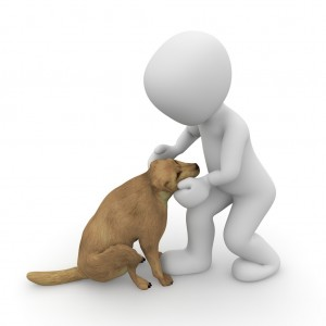 dog-1015662_1280